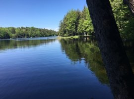 View from the dock of Tranquil, Matilda Bay on Cranberry Lake.