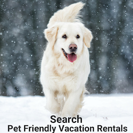 Pet Friendly Vacation Rentals | New York Rental By Owner